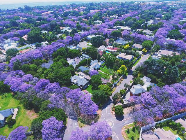 The Johannesburg Full Day Tour takes you to iconic heritage sites in Johannesburg CBD and The Apartheid Museum; showcasing South Africa's turbulent history and promising future.