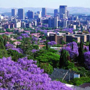 Pretoria Half Day Tour