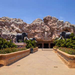 Sun City- Pilanesberg Shuttles to Pretoria Central, Steyn City & Midrand.