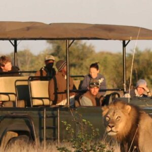 4-day Tremisana Lodge safari